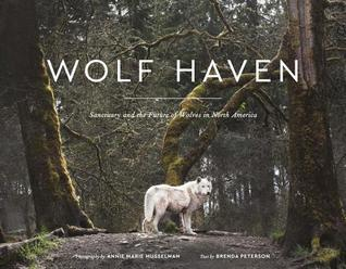 wolf haven cover.jpeg